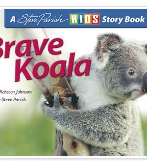 Brave Koala