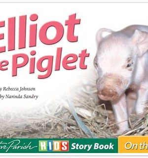 Elliot The Piglet