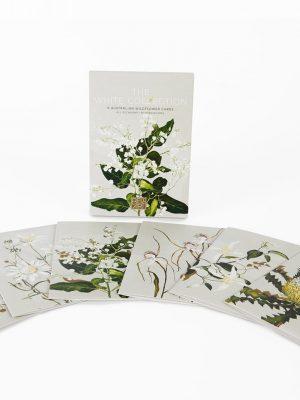 Product Australian Wildflower Blank Card Pack01