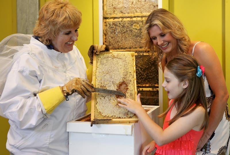 Bee-Show-Honey-Tasting-05