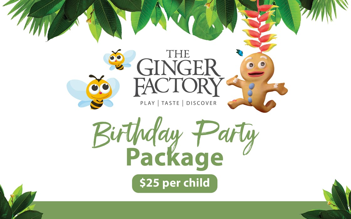 Birthday Party Package 2018 10 24