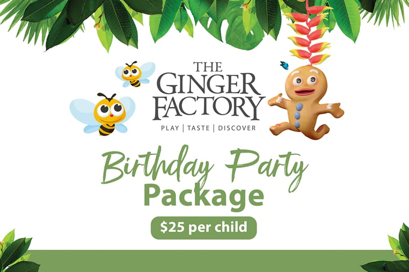 Birthday Party Package Functions 2018 10 24