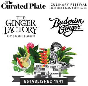The Ginger Journey And Logos